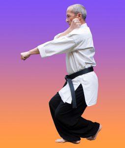 karate jutsu